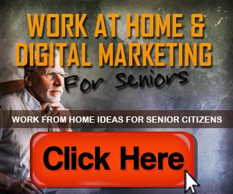 Work at Home for Seniors